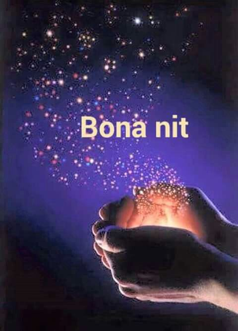 Bona Nit Good Night Image Merry Christmas Poster Christmas Poster