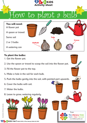 A Set Of Simple Illustrated Instructions For Planting
