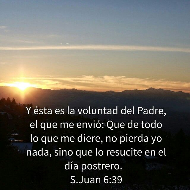 De Todo Lo Que Me Diere No Pierda Yo Nada Salmo 27 1 Teología Salmos