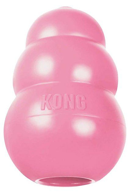 Buy Kong Puppy Dog Toy Color Varies Small At Chewy Com Free