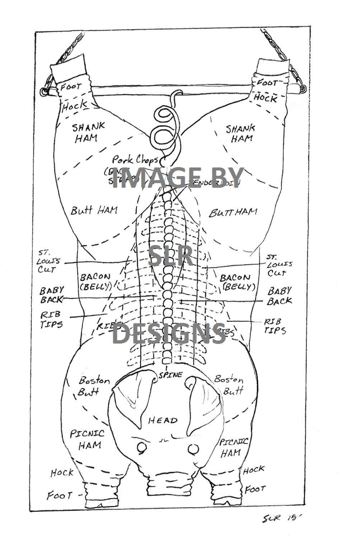 pig diagram top view [ 950 x 1500 Pixel ]