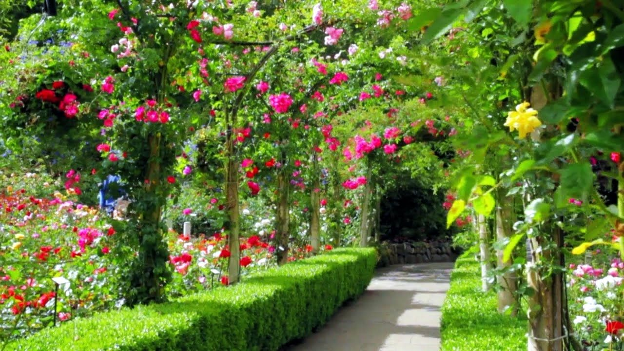 Most beautiful garden canada youtube gardens for Decoration jardin colore