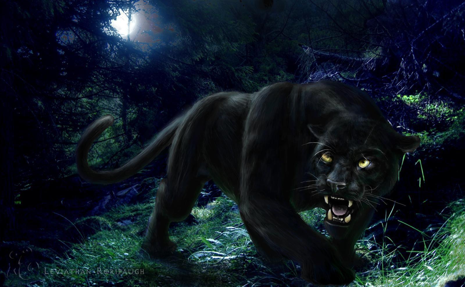 Assez Free Panther Wallpaper | HD Wallpapers | Pinterest | Wallpaper LH33