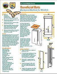 156 Best DIY Birdhouses images | Birdhouses, Bird house ...