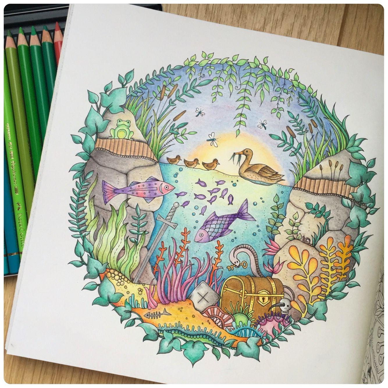 Book Enchanted Forest By Johanna Basford Medium