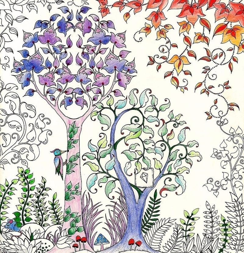 Why Do Adults Love Coloring Books Interview With Johanna Basford Artist Of 2 Bestselling
