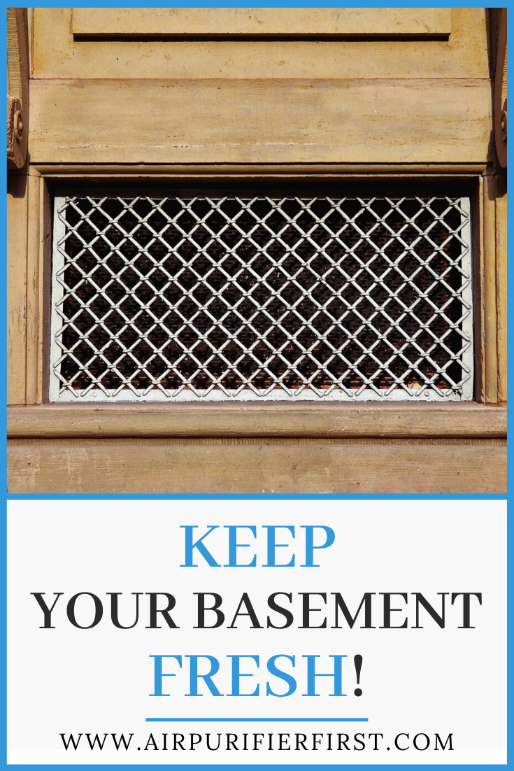 Keep Your Basement Fresh! Air purifier, Purifier, Clean air