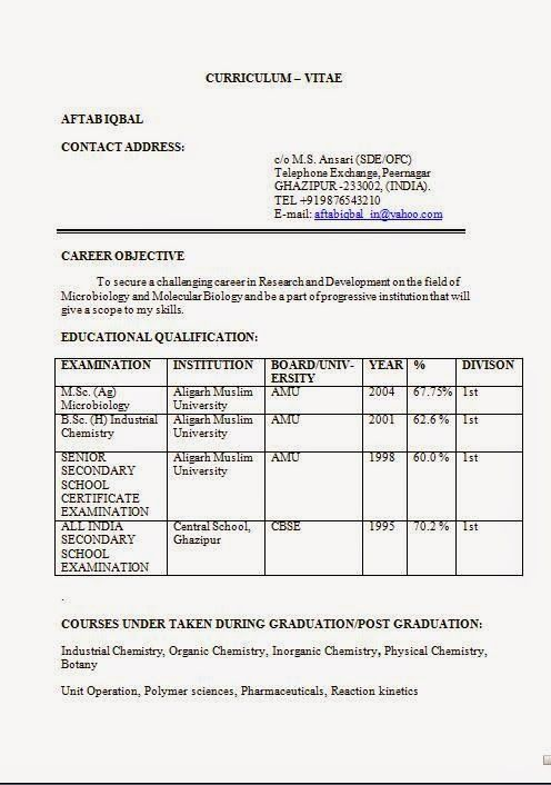 format of cv for job Sample Template Example ofExcellent CV - example of cv and resume