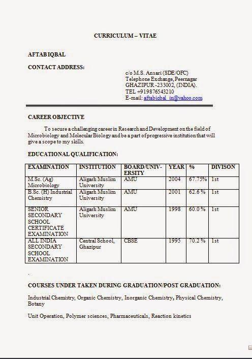 resume format for bsc chemistry freshers  restaurant