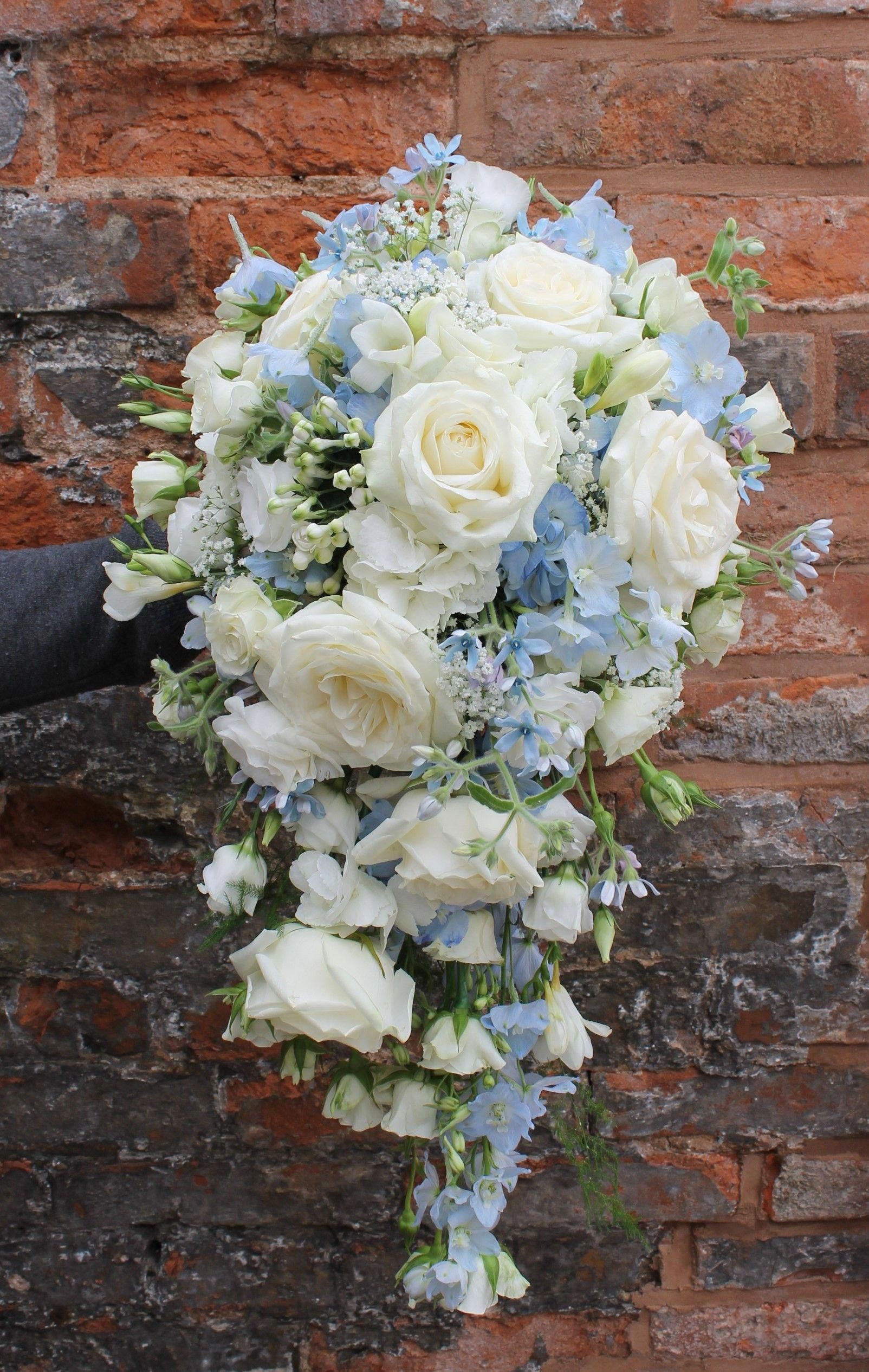 cascading bridal bouquet in pale blue and ivory flowers - avalanche roses - blue delphinium - blue hydrangea - oxypetalum - lisianthus - and freesia #whitebridalbouquets