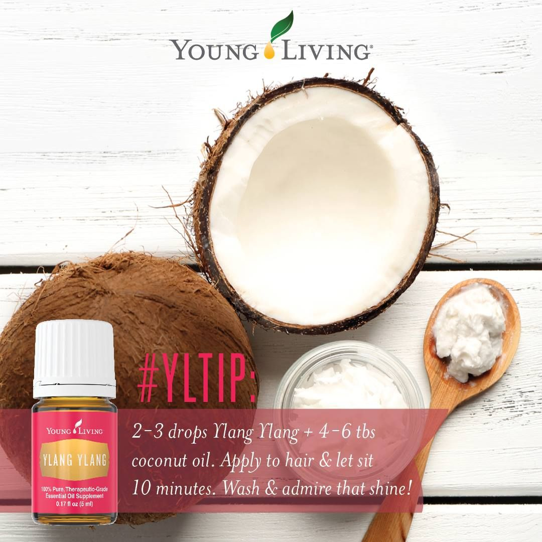 Young Living Essential Oils: Ylang Ylang | Mix a few drops of Ylang Ylang essential oil with 4-6 tbsp of coconut oil to boost your hair's natural shine. For more info and to get yours, visit: WWW.THESAVVYOILER.COM