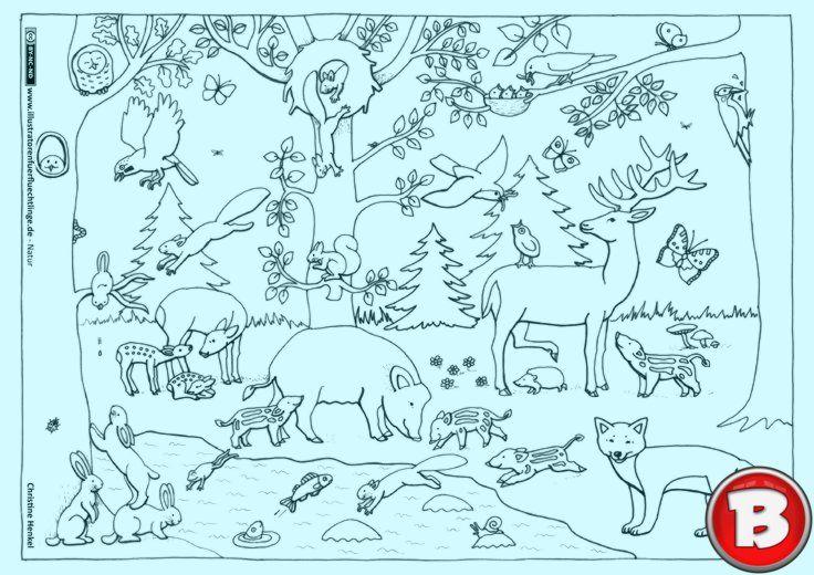 natur wald herbst tiere malvorlage kindergarten  herbst