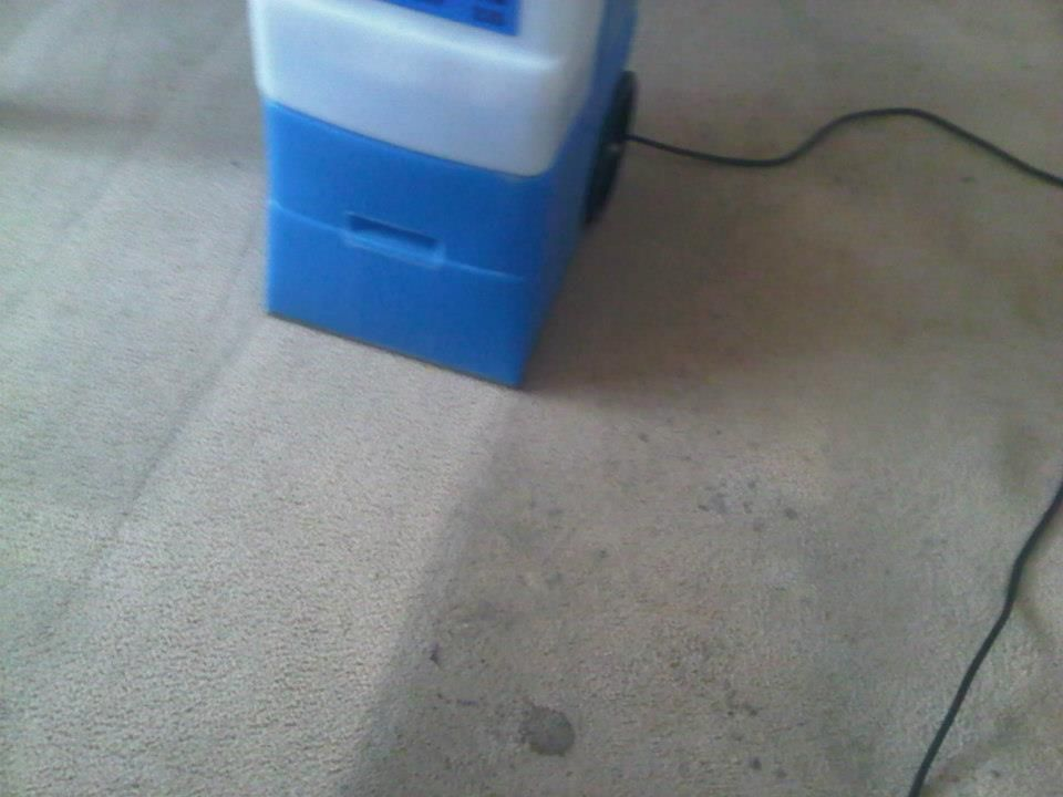 Carpet Cleaning Results Using The Rug Doctor Mighty Pro Widetrack