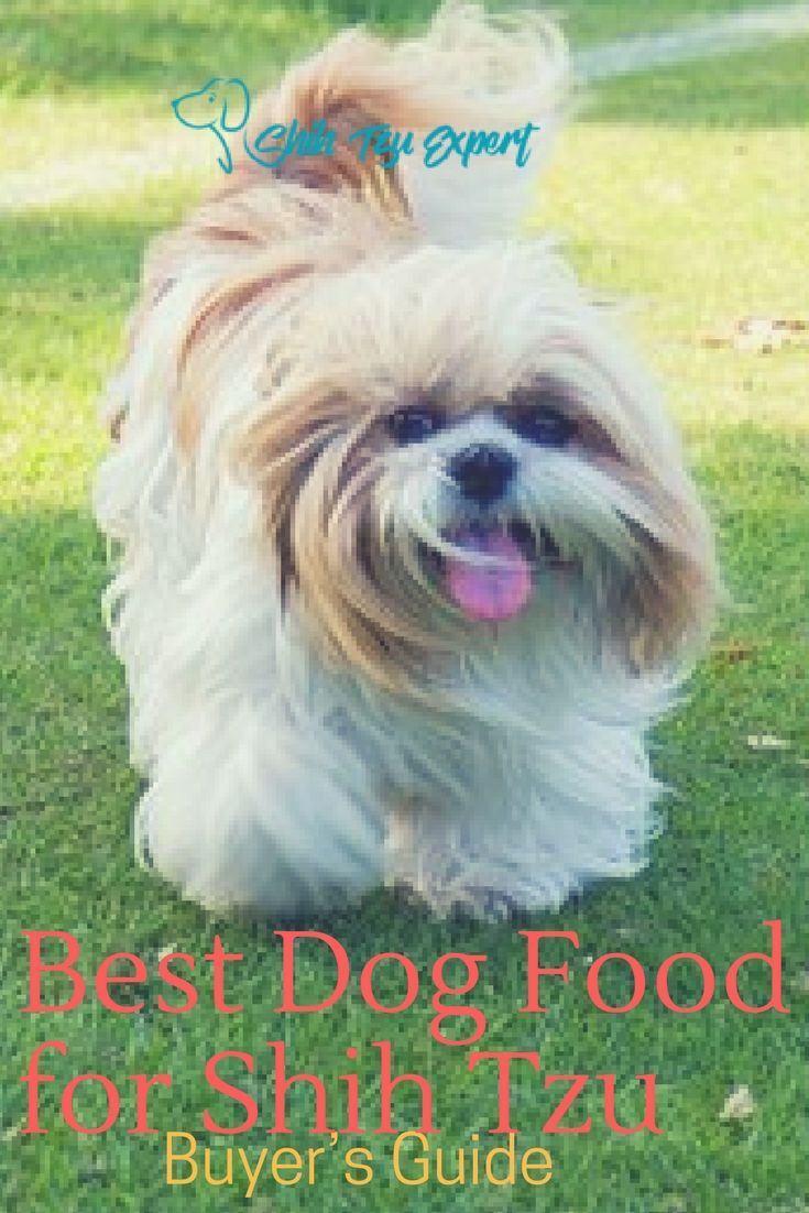 Best dog food for shih tzu top 10 puppies adults