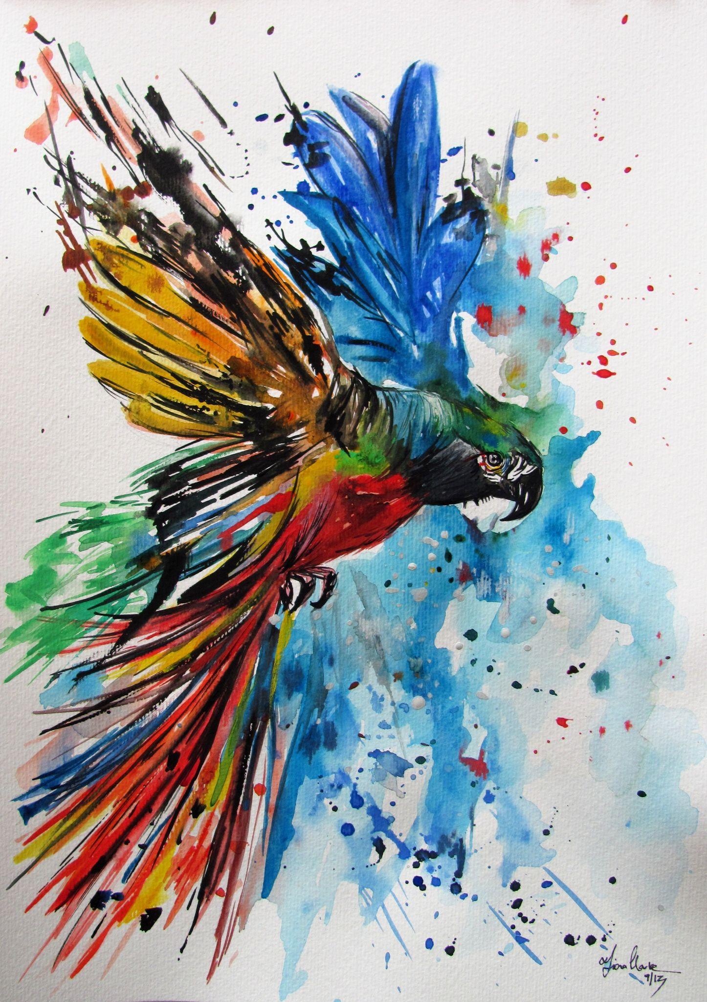 colourful parrot watercolor by fionaclarkecom art