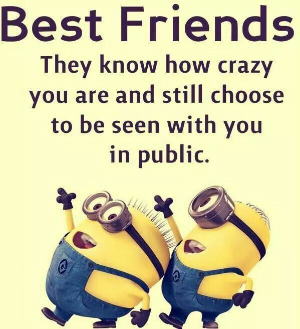 Pin By Amy Witte On Hahaha Pinterest Humor Funny Minion And