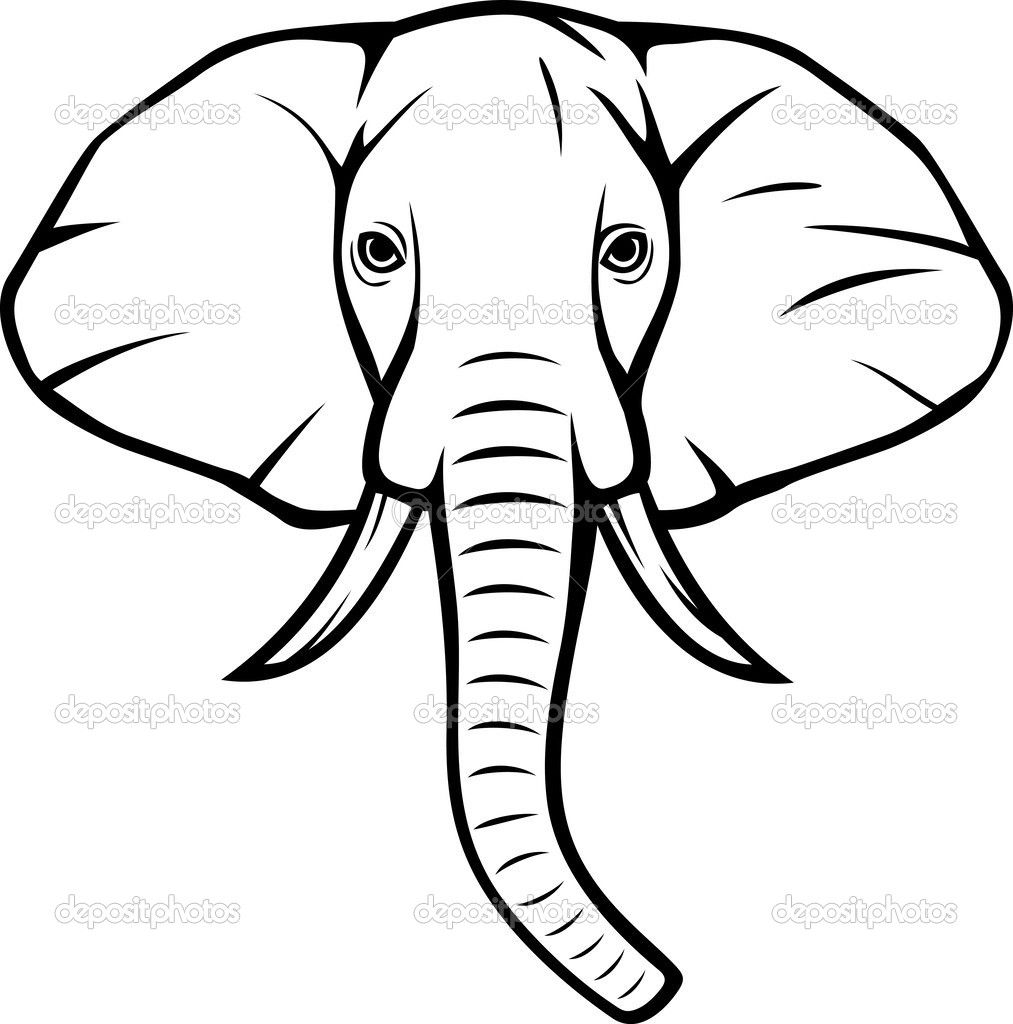 Pix For Gt Indian Elephant Head Drawings Outline Template Cartoon