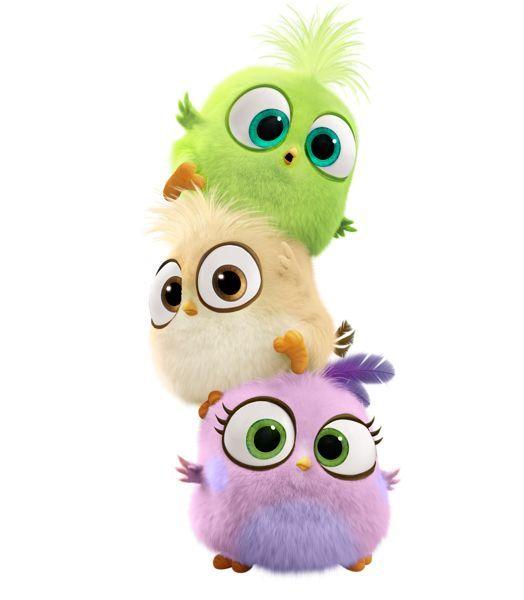 Angry Birds Movie Bird Hatchlings PNG Transparent Image:   cartoon ...