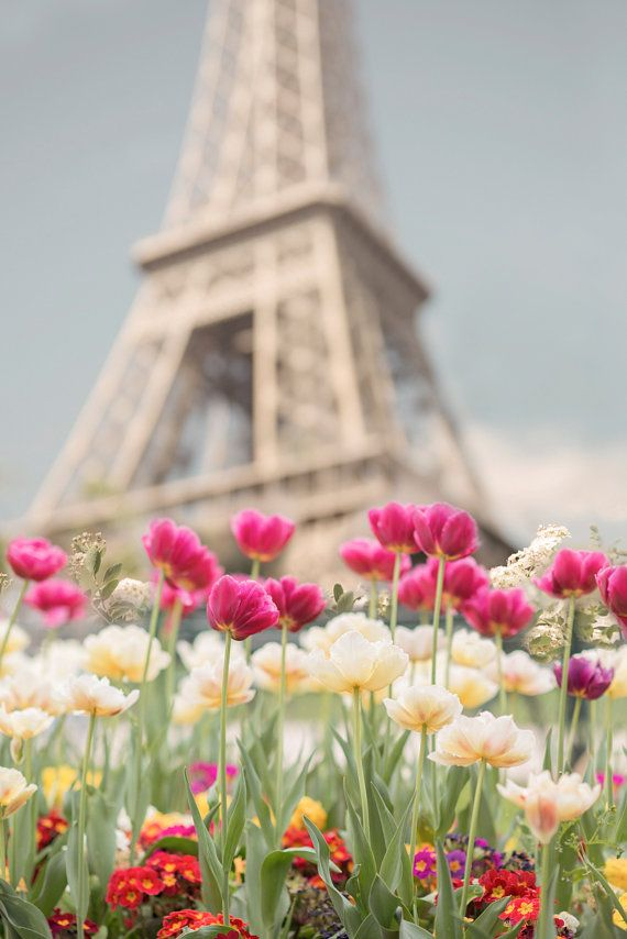 paris photography tulips at the eiffel tower paris in spring french home decor large wall. Black Bedroom Furniture Sets. Home Design Ideas