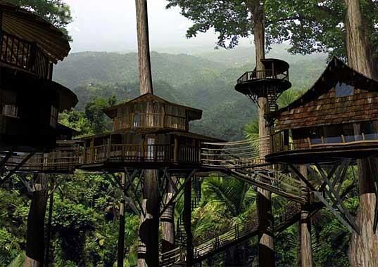 Finca bellavista rainforest village costa rica a permanent community of treehouses at the base of a rain forest mountain the goal of the community is to