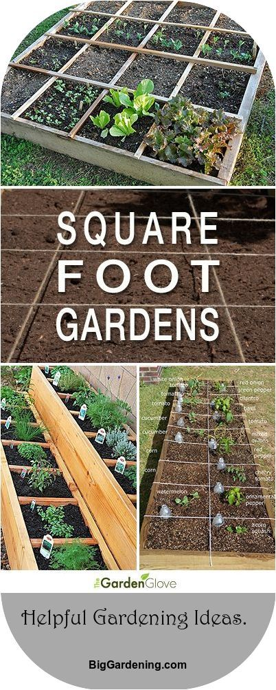 Easy Steps To Square Foot Garden Success The best ways to examples jobs to get you began. #gardeninglife #epicgardening #smallspacegardening #gardeningmakesmehappy #apartmentgardening #gardeninggoals #gardening4pleasure #gardening_love #erhöhtegartenbeete