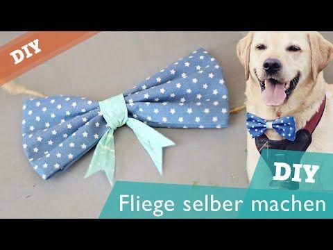 DIY Hundehalsband selber machen | Hund Halstuch Halsband nähen ...