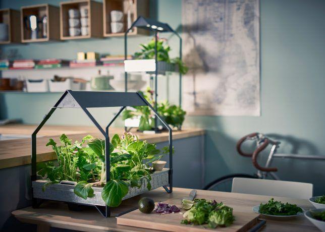 Ikea Fresh Food Hydroponic Gardening Indoor Vegetable Gardening