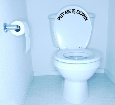Put Me Down Funny Toilet Seat Decal Removable Wall Art Vinyl