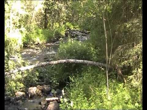 Korouoman rotkolaakso - Korouoma canyon