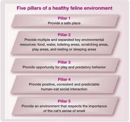 AAFP and ISFM Feline Environmental Needs Guidelines