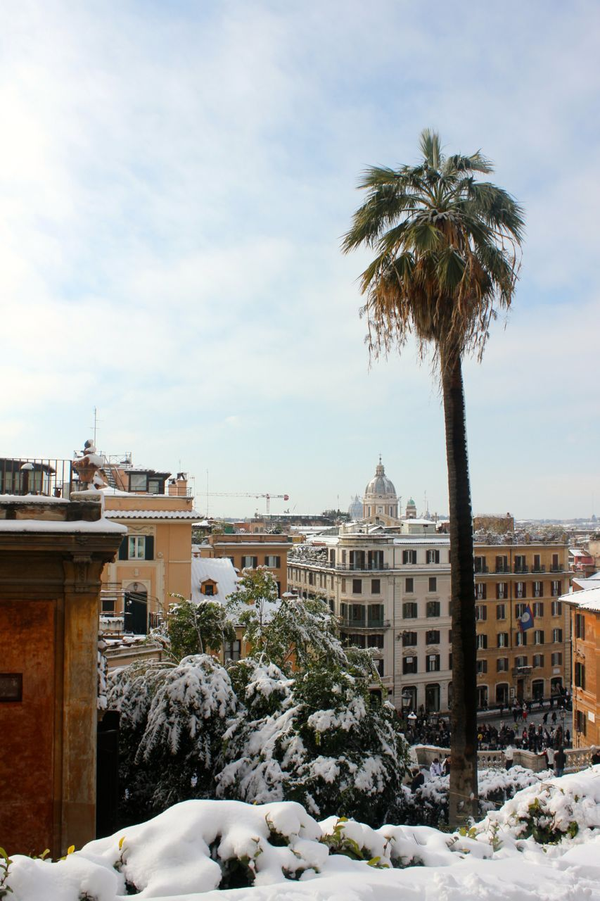 Weather In Rome Italy Planning Your Trip Rome Weather Rome Rome Italy