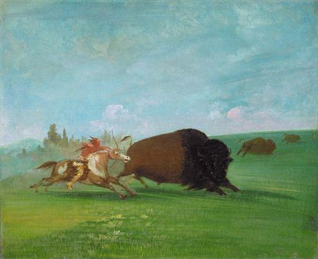 Buffalo Chase, a Single Death by George Catlin kp