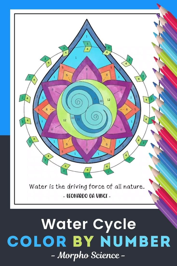 Water Cycle Worksheet Color By Number Video Science Math Morning Work Water Cycle [ 1102 x 734 Pixel ]