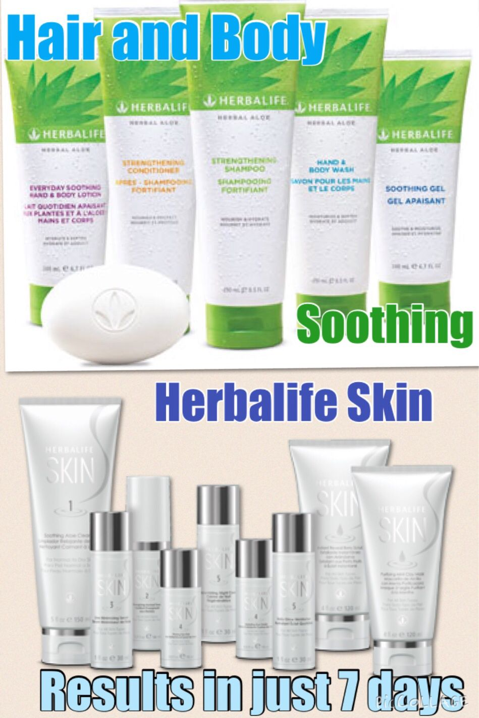 Did you know that herbalife is not just inner core