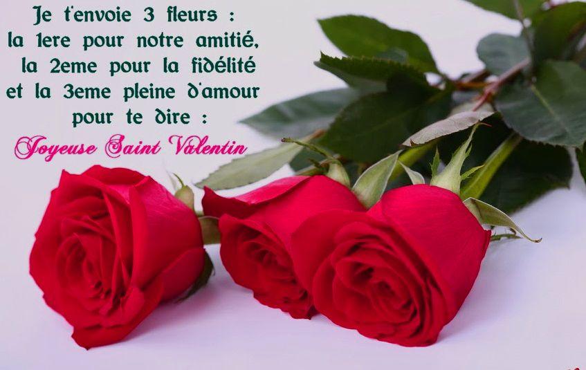 Belle Fleur D Amour