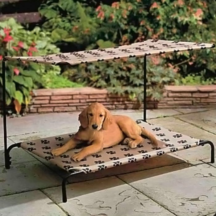 Paw Print Pet Cot With Canopy 15 26 Pets Outdoor Dog Bed Pet Beds