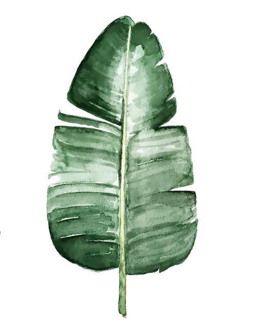 frische grüne pflanzen leinwand malerei mode aquarell pflanzen wohnzimmer dekor wandkunst dru…