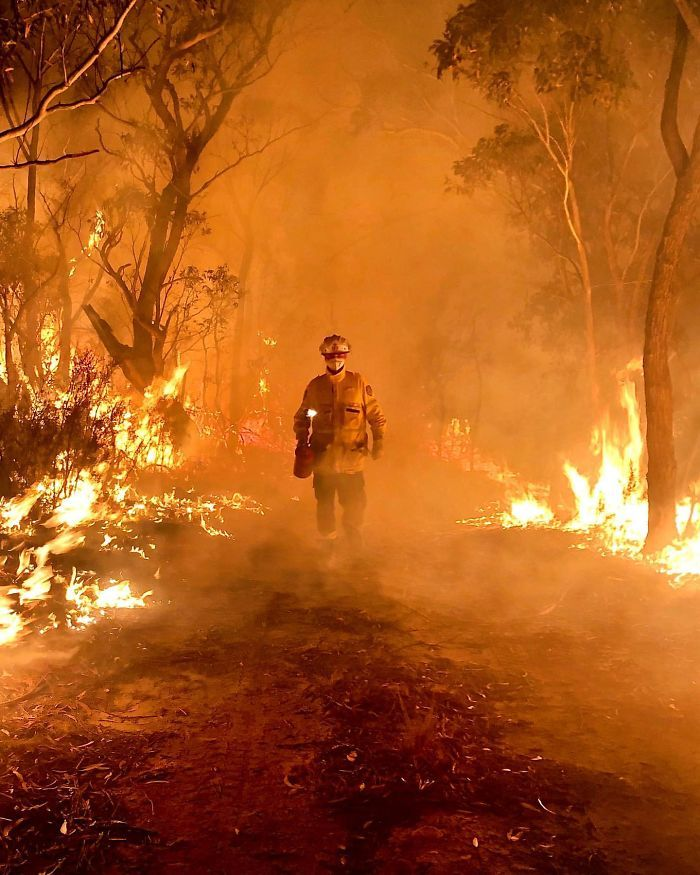 Forest fire in Australia trong 2020 Mắt