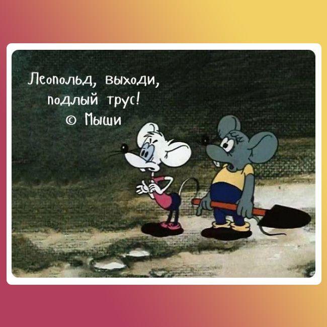 Гриценко: Я публічно закликаю Зеленського вийти зі мною на прямі дебати - Цензор.НЕТ 7872
