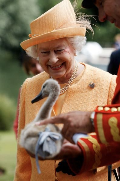 Queen at the annual Swan Upping Ceremony