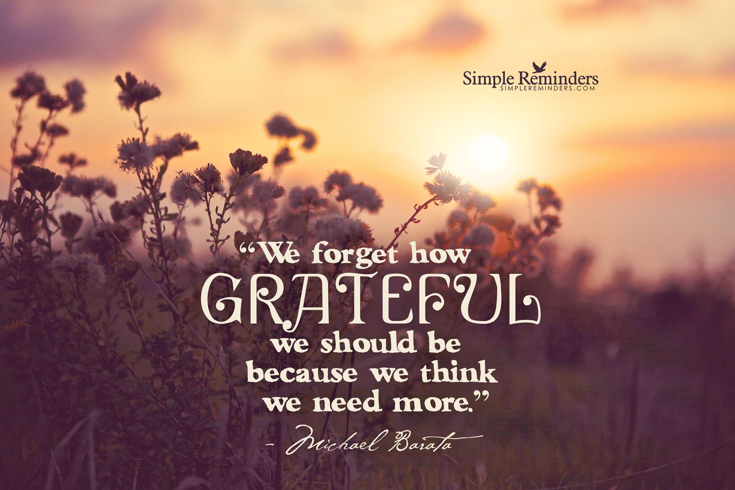 We forget how grateful we should be, because we think we need more. ~Michael Barata  #values #grateful #gratitude #thankful #enough #satisfied  @SIMPLE Comunicación Comunicación Reminders