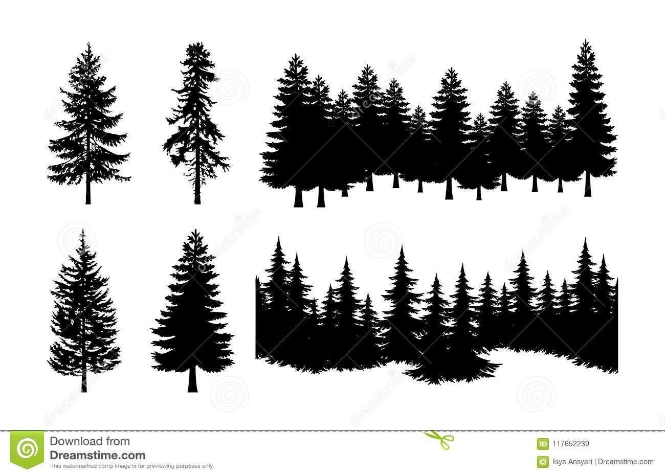 Https Www Dreamstime Com Mrisyaansyari Portfolio Pg1 Res22187011 Forest Silhouette Pine Tree Silhouette Tree Silhouette