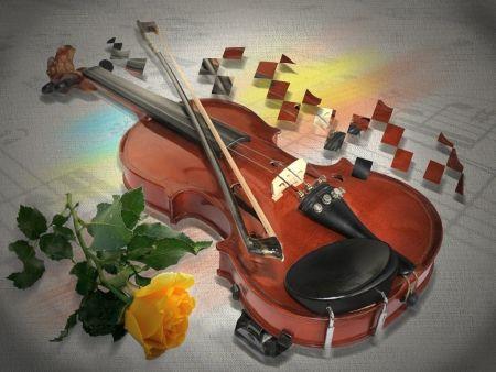 Violin Rose Wallpaper Violin And Rose For Rosa Violins Roses