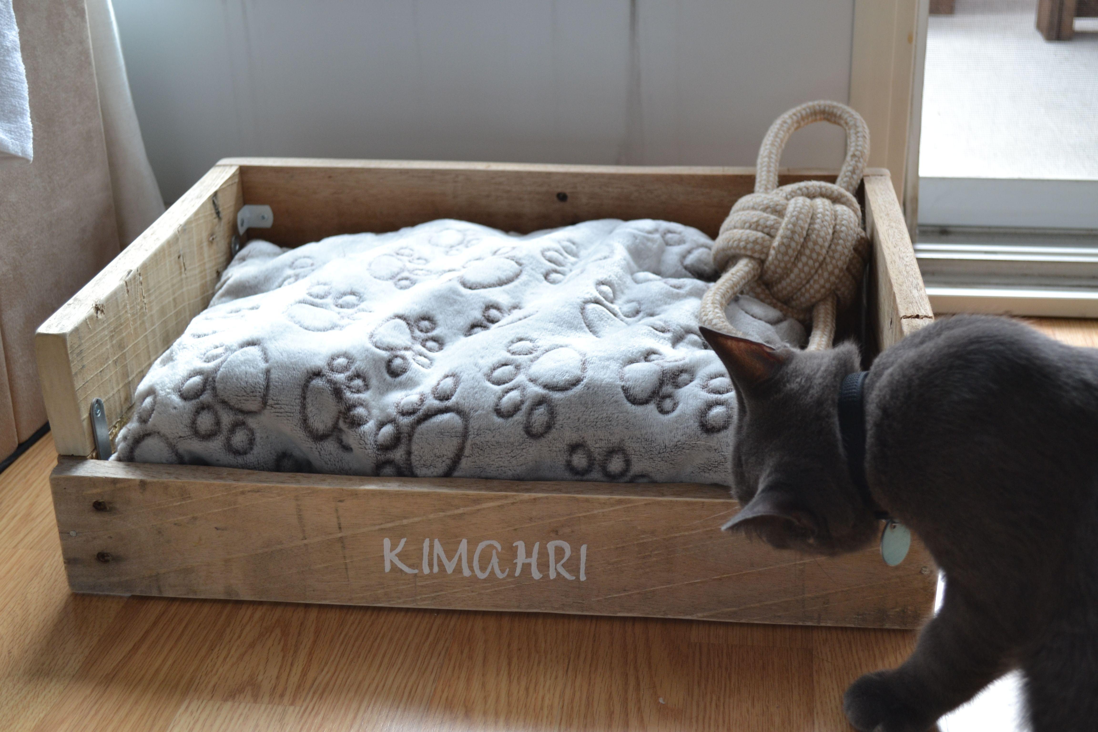 Un petit lit pour mon chaton kimahri fait en bois de palette accessoires chat pinterest - Mon chaton fait pipi sur mon lit ...