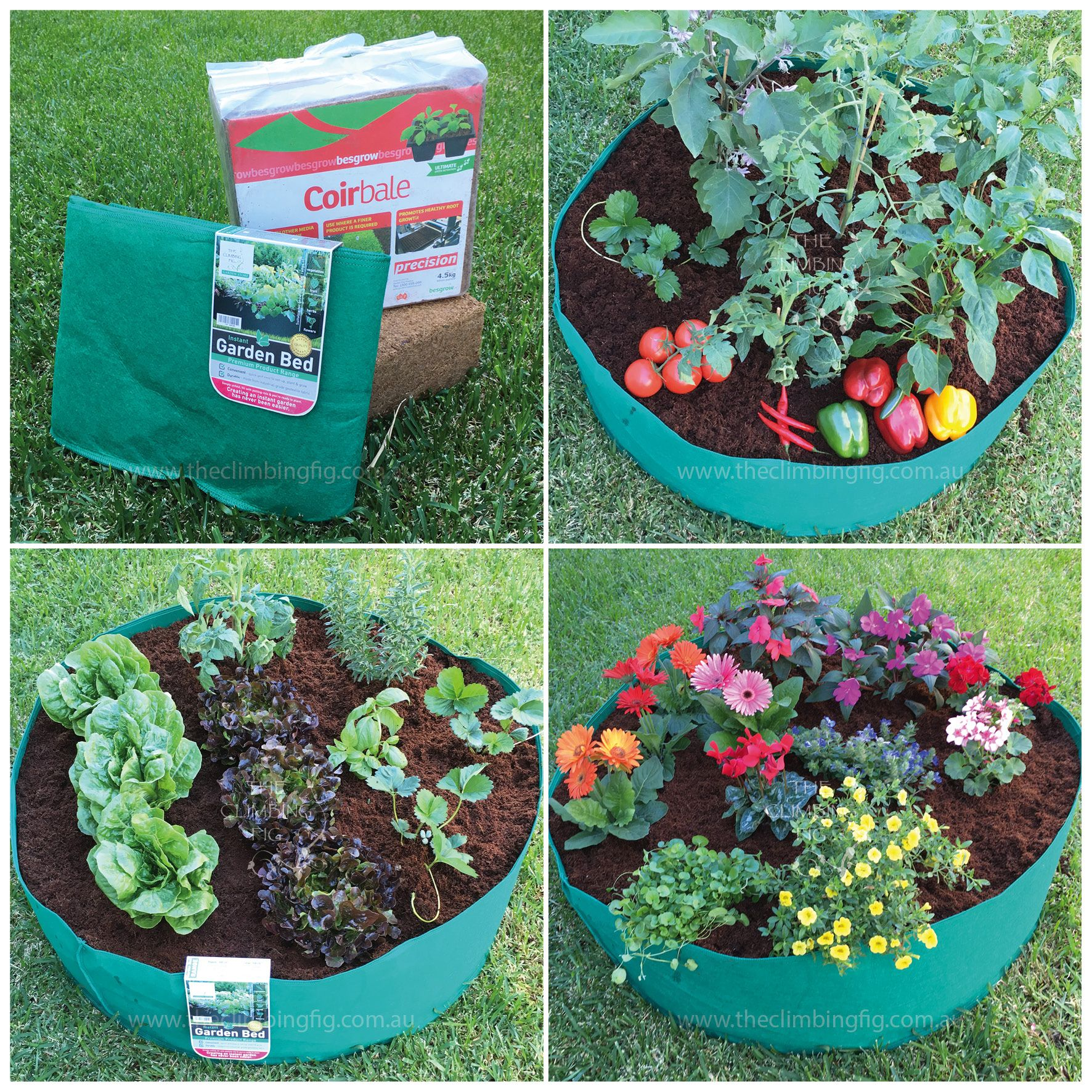 Plant Propagation Kits With Jiffy, Fertiliser Options
