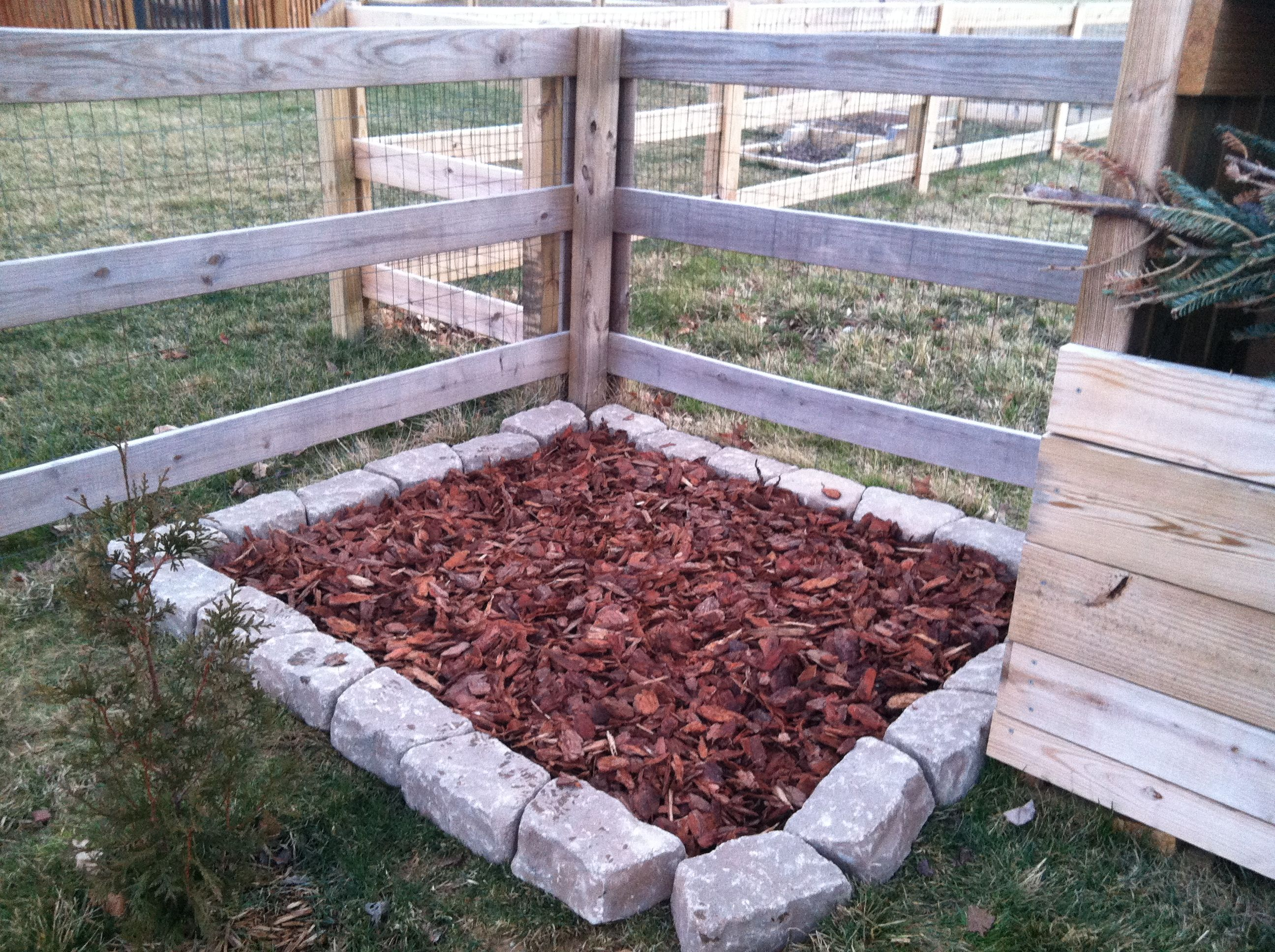 Designated Dog Bathroom Landscaping Bricks Cardboard To Kill