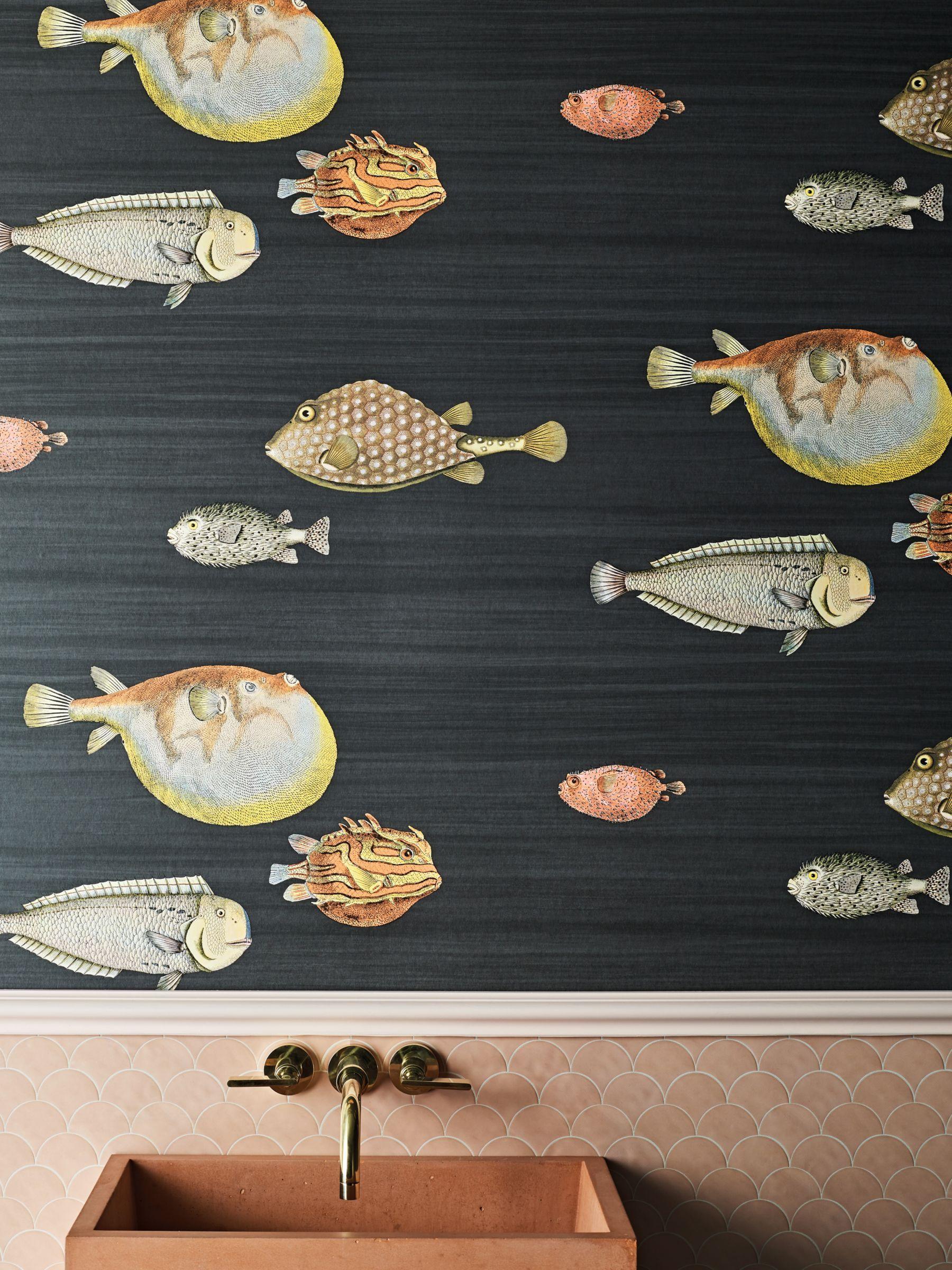 Acquario 114 16032 In 2020 Cole Son Wallpaper Cole Son Fish