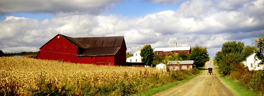 ohio counties with amish