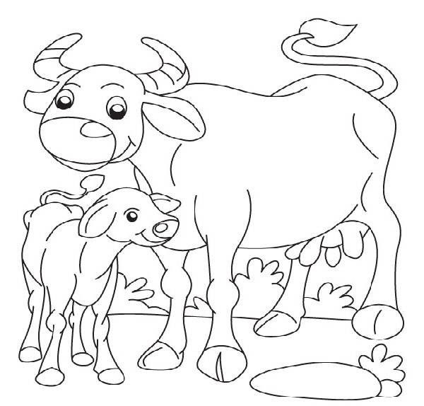 Buffalo Coloring Pages Mhtfk Coloring Pages For Kids Coloring