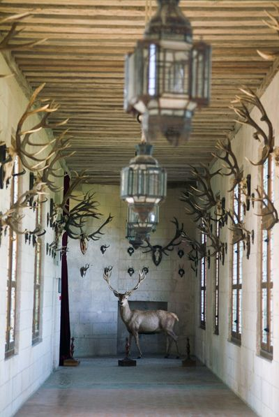 Room of Trophies, Chambord Castle, Loire valley, France.